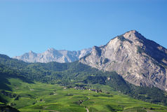 Picturesque Alpine landscape. Scenic view of Alpine mountains range with forest, green vineyards and village in foreground, Switzerland Stock Images