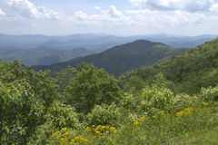 Picturesque Appalachian Mountains in Summer Stock Image