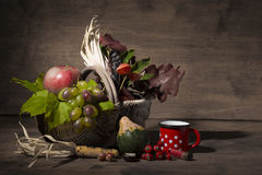 Picturesque autumn composition with  basket, fruits, pumpkin, mug Stock Photos
