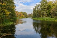 Picturesque autumnal forest on the banks of the river stock photos