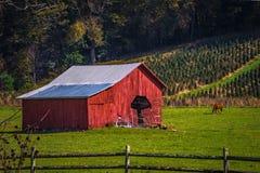 Picturesque autumn landscape in west virginia