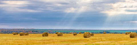 Free Picturesque Autumn Landscape With Beveled Field And Straw Bales In Cloudy Day. Beautiful Agriculture Background, Wonderful Nature Royalty Free Stock Photos - 190746368