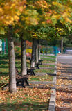 Picturesque autumn park Royalty Free Stock Photo