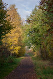 The picturesque autumn path. A scenic walk among the autumn trees full of colors Stock Photos