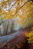 Misty autumn road Stock Photography