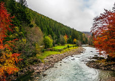 Picturesque autumn scenery with forest river in mountains. Overwhelming colors of foliage on overcast day in countryside Stock Photography
