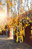 Picturesque autumn Royalty Free Stock Images
