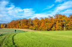 Picturesque, autumnal landscape in south Bavaria, Germany Royalty Free Stock Images