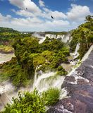 Picturesque basaltic ledges. Form the famous waterfalls. Waterfalls Iguazu on the border of Argentina, Brazil and Paraguay. The concept of active and exotic Royalty Free Stock Images