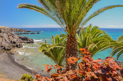 Picturesque beach and volcanic rocks in Alcala on Tenerife Royalty Free Stock Image