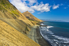Picturesque black sand volcanic beach at summer, south Iceland Stock Photo