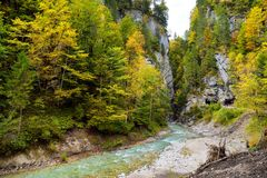 Picturesque blue river flowing through autumn forest in Berchtesgaden, Bavaria, Germany. Royalty Free Stock Photos