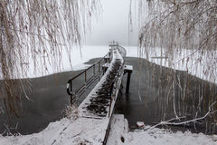 Picturesque bridge over winter pond. Picturesque pedestrian bridge over winter frozen pond in fog Royalty Free Stock Images