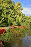 Picturesque bush around a circular pond Royalty Free Stock Photos