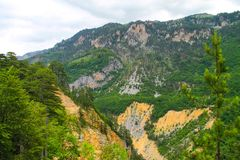 A picturesque canyon among the high mountains covered with green forest Royalty Free Stock Image
