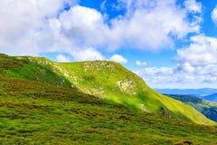 Picturesque Carpathian mountains, nature landscape in summer, Ukraine. Royalty Free Stock Photo