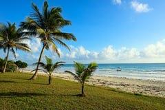 Picturesque coast Diani Stock Images