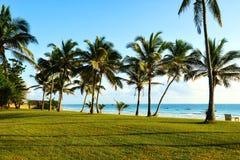 Picturesque coast Diani Royalty Free Stock Photos