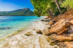 Picturesque coast landscape of Formentor beach on Majorca. View of beautiful bay beach landscape of Platja de Formentor, dreamlike seaside on Mallorca, Spain Royalty Free Stock Image