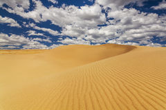 Picturesque desert landscape on the background of blue sky and w Royalty Free Stock Photos