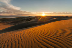 Picturesque desert landscape with a golden sunset Royalty Free Stock Photography