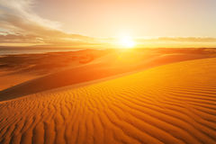Picturesque desert landscape with a golden sunset over the dunes Stock Photography