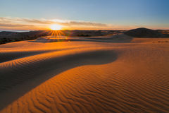 Picturesque desert landscape with a golden sunset over the dunes Royalty Free Stock Photography