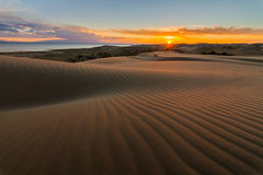 Picturesque desert landscape with a golden sunset over the dunes Stock Photos