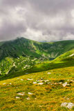 Picturesque and dramatic Carpathian mountains under huge rain clouds, nature landscape in summer, Ukraine. Stock Photos