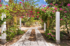 Picturesque entrance to the garden located near Ocu in Panama Stock Image