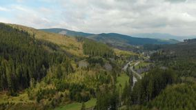Picturesque European nature with mountain peaks, forest with coniferous trees, fast river in the gorge stock footage