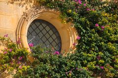 Picturesque facade with colorful purple bougainvillea flower inside the ancient fortified city of Mdina, Malta. Maltese architectu. Mdina, Malta Maltese old Royalty Free Stock Photos