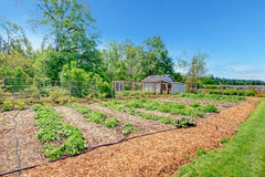 Picturesque farm garden bed and green house Stock Photos
