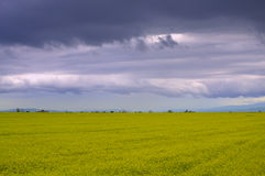 Picturesque fields stormy skies Stock Images