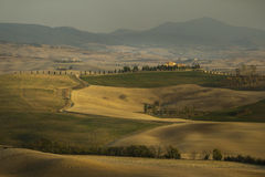 Picturesque fields in Tuscany. Autumn agriculture works in Tuscany royalty free stock photo