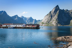Picturesque fishing town of Reine by the fjord on Lofoten island Stock Photography