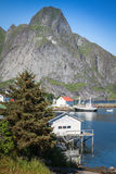 Picturesque fishing town of Reine by the fjord on Lofoten island Royalty Free Stock Image
