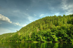 Picturesque forest and the river Royalty Free Stock Photo