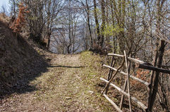 Picturesque forest road. Picturesque forest mountain road with wooden gate closeup in early sunny springtime day Royalty Free Stock Photography