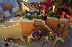 Mules caravan Santorini restaurant royalty free stock image