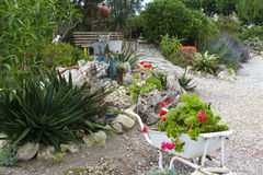 Picturesque garden. In Paternoster, a small town the west coast of South Africa in the Western Cape Province royalty free stock images