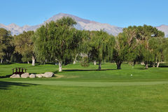 The picturesque golf course Stock Image