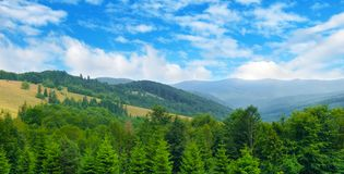 Picturesque and gorgeous scene. Location place Carpathian, Ukraine, Europe. Wide photo. Slopes of mountains, coniferous trees and clouds in the sky. Picturesque stock photos