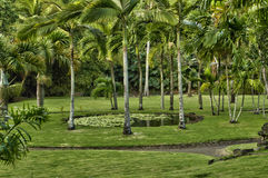 Picturesque Habitation Anse Latouche garden in Marti Stock Photography