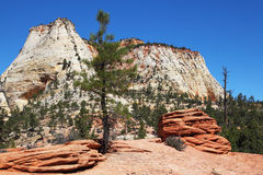 The picturesque hills of sandstone Royalty Free Stock Photo