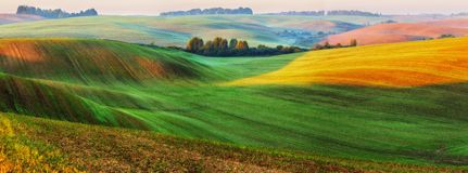 Picturesque hilly field stock images