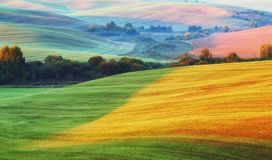 Picturesque hilly field stock photos