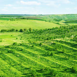 Picturesque hilly terrain Royalty Free Stock Image