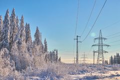 Picturesque image of the snow spruce . Cold day, calm winter scene. The concept of tourism. Happy New Year Russian royalty free stock photo