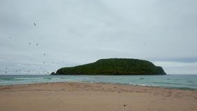 The picturesque island in the middle of the sea near the wild sandy beach stock footage